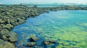 Here Are 8 Hawaii Tide Pools That Will Make Your Weekend Epic