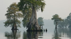 10 More Fascinating Places In North Carolina That Are Straight Out Of A Fairytale