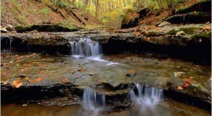 If You Live In Indiana, You Must Visit This Amazing State Park