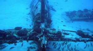 These 11 Enchanting Underwater Wrecks In Hawaii Are A Diver's Dream