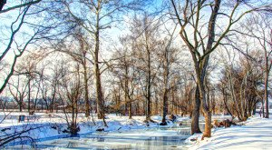 15 Times Snow Transformed Maryland Into The Most Beautiful Scenery