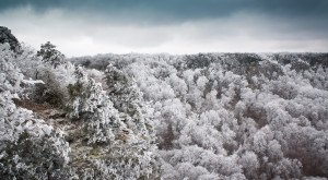 12 Times Snow Transformed Arkansas Into The Most Beautiful Scenery