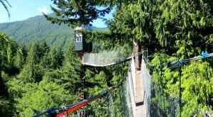 This Treehouse In Washington Will Give You An Unforgettable Experience