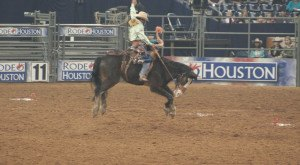 8 Things You Didn't Know About The Houston Rodeo