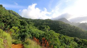 This One Hike In Hawaii Will Give You An Unforgettable Experience