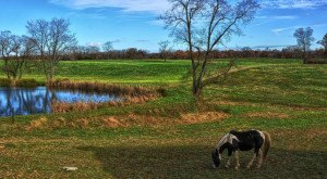 20 Photos That Prove Rural Maryland Is The Best Place To Live