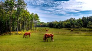13 Photos That Prove Rural Maine Is The Best Place To Live