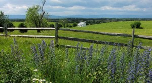 18 Reasons Living In Vermont Is The Best – And Everyone Should Move Here