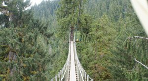 These Terrifying Swinging Bridges In Alaska Will Make Your Stomach Drop