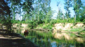 Everyone In Louisiana Should Visit This Epic Natural Spring As Soon As Possible