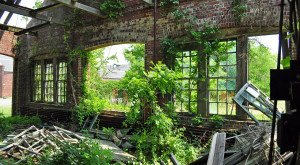 Nature Is Reclaiming This One Abandoned New Jersey Spot And It's Actually Amazing