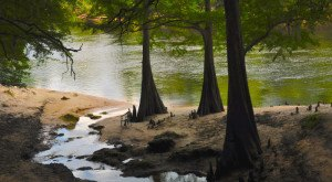 13 Amazing Florida Secrets You Never Knew Existed