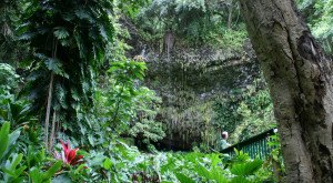 This Magical Grotto Hiding In Hawaii Will Drop Your Jaw