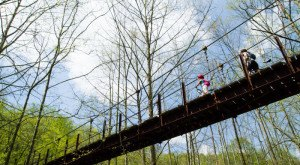 This Terrifying Swinging Bridge In Maryland Will Make Your Stomach Drop