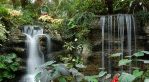 7 Enchanting Urban Waterfalls That Everyone In Tennessee Should Visit