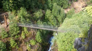 This Terrifying Swinging Bridge In Washington Will Make Your Stomach Drop