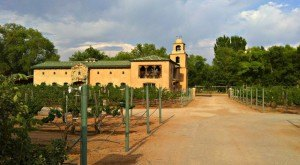 These 8 Beautiful Wineries In New Mexico Are A Must-Visit For Everyone