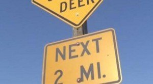 Everyone In Iowa Is Talking About This Bizarre Road Sign Near St. Ansgar