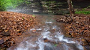 Everyone in Illinois Must Visit This Epic Natural Spring As Soon As Possible