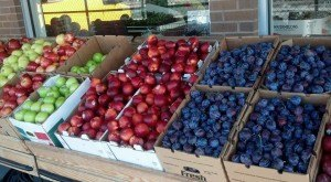 These 13 Incredible Farmers Markets In Colorado Are A Must Visit