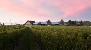 These 9 Beautiful Wineries In Rhode Island Are a Must-Visit For Everyone