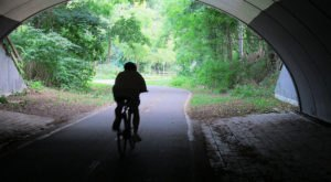 Here Are The 6 Most Beautiful Bike Trails In Rhode Island