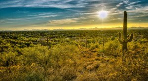 16 Reasons Why My Heart Will Always Be In Arizona