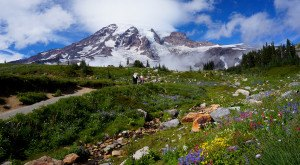 This Hike In Washington Will Give You An Unforgettable Experience