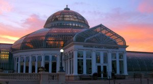 10 Fascinating Things You Probably Didn't Know About The Como Park Zoo & Conservatory In Minnesota