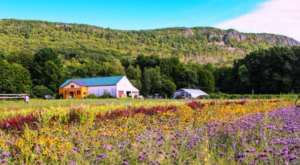 15 Sites In Massachusetts That Will Remind You How Stunning America Truly Is