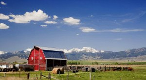 You Will Fall In Love With These 12 Beautiful Old Barns In Montana