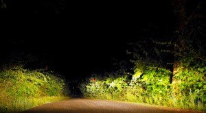 Driving Down This Haunted Kentucky Road Will Give You Nightmares