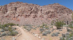 10 Incredible Hikes Under 5 Miles Everyone In Nevada Should Take