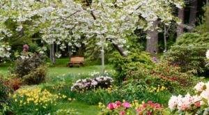 15 Amazing Hidden Gardens To Visit In Washington This Spring