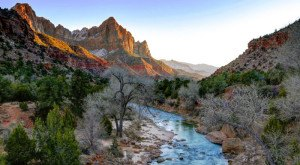 18 Fascinating Things You Probably Didn't Know About Zion National Park in Utah
