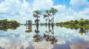 7 Wonders Of The World That Are Actually Right Here In Louisiana