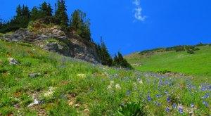 15 Reasons Why My Heart Will Always Be In Utah