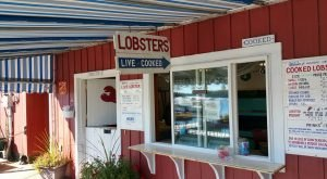 These 11 Restaurants Serve The Best Lobster Rolls In Maine