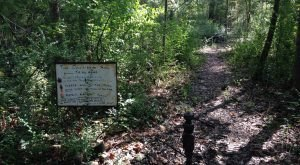 Take A Terrifying Hike Along Doll's Head Trail, An Eerie Walking Path In Georgia