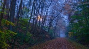 9 Trails In Pittsburgh You Must Take If You Love The Outdoors