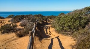 10 Scenic Hikes Under 5 Miles Everyone In Southern California Should Take