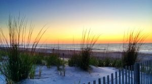 10 Gorgeous Beaches in Delaware You Have to Check Out This Summer