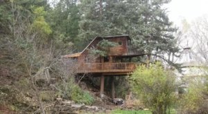 This Treehouse In Colorado Will Give You An Unforgettable Experience