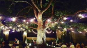 Try These 10 Southern California Restaurants For A Magical Outdoor Dining Experience