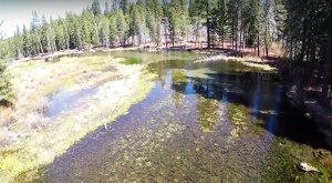 What This Drone Footage Caught In Northern California Will Drop Your Jaw