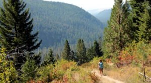 12 Incredible Hikes Under 5 Miles Everyone In Montana Should Take