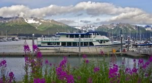 25 Awesome Jobs In Alaska That Let You Work Hard And Play Harder