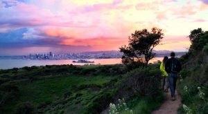 10 Amazing State Parks Around San Francisco That Will Blow You Away