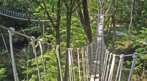 This Terrifying Swinging Bridge In Ohio Will Make Your Stomach Drop
