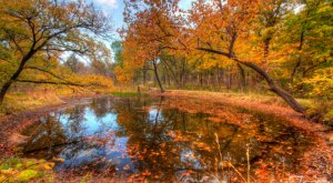 This Underrated Recreation Area Just Might Be The Most Beautiful Place In Oklahoma